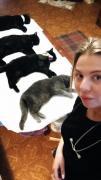 Кастрация кота на дому в Харькове