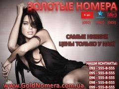 Start packs, contracts MTS We offer Golden numbers MTS, Kyivstar life