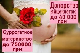 "The surrogate motherhood center ""SURmamka"" Mariupol"