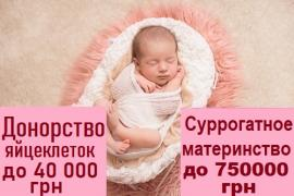 To become a surrogate mother Kamenskoye (Dniprodzerzhynsk.) Center SURR